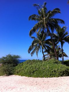 budgeting for a hawaii vacation hawaii-on-the-cheap
