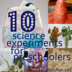 10 Science Experiments for Preschoolers ~ Creative Family Fun - tornado in a bottle, stages of matter, make a cloud, siphon water, how sound is made, diet coke & mentos, how water travels through a plant