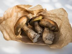 Funghi porcini, with their meaty texture and heady, earthy fragrance, are by far Italy's most valued wild mushrooms; here are 3 ways to cook them. Dried Mushrooms, How To Cook Mushrooms, Edible Mushrooms, Porcini Mushrooms, Stuffed Mushrooms, Mushroom Sauce, Mushroom Recipes, Fall Recipes, Healthy Recipes