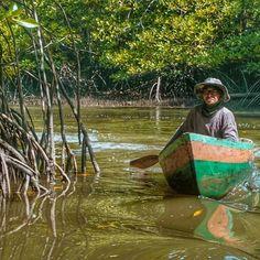 Navigating Kina Benuwa Wetland #Labuan #Borneo #Malaysia Photo by @ismyuel Labuan, Borneo