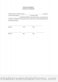 Sample Printable Preliminary Report On Application For Title