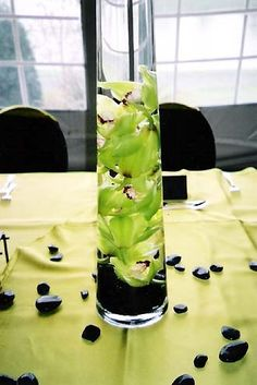 cymbidium orchids in lime green... for centerpiece and black rocks (or blue orchids and tablecloth)