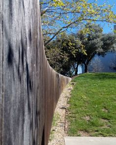 I love the curve of this wall... #hollisterdesignstudio #hollisterstudio #landscapedesign #landscapedesigner #plants #gardens #design #designlovers  #droughttolerant #gardendesign #napa #Sonoma