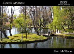 "Fonti del Clitunno @ Campello sul Clitunno.  In Umbria ""the Green Heart of Italy"".  Umbria is the Art of Living"