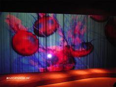 Design Exhibition Milano 2008: Wasserwand Edelstahl als Projektionsfläche - watershow.de #milan #mailand #wasserleinwand #wasserleinwände #wasservorhang #wasservorhänge #watercurtain #watercurtains #waterscreen #waterscreens