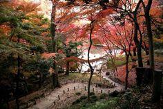 Nishinomaru Garden, Japan. Check out more amazing destinations at http://glamshelf.com