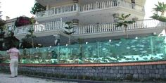This House In Turkey Has A 165-Foot Aquarium For A Fence