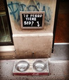 Tu perro tiene sed? Is your dog thirsty?  Love this sign and dog bowl outside a shop in Málaga . . . #malaga #Spain #andalucia #sed #thirsty #perro #dog #caring #loveit #feelthelove #globetrotter #wanderlust #travel #travelingtheworld