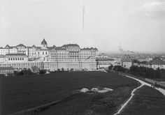 Old Pictures, Old Photos, Buda Castle, Budapest Hungary, Historical Photos, Landscapes, Louvre, History, Architecture