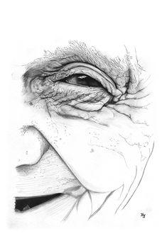 Bleistiftzeichnung Frau #Gesicht Alt 1 DIN A4 von Josef Hinterseer
