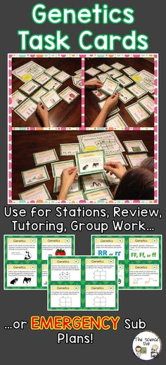 Genetics Task Cards. These cards are great for review, rotations, partner work, or independent study.