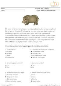 silverback gorilla facts worksheets facts and