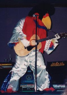 Cajun Chicken, ULL Ragin' Cajuns mascot, dressed as Elvis.