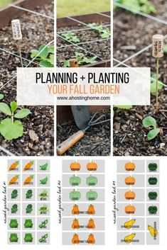 Planning and Planting Our Fall Garden | A Hosting Home