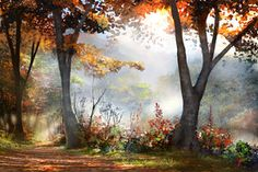 Fall Morning - completed by jjpeabody