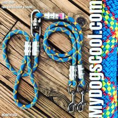 Two Dogs, Large Dogs, Rope Dog Leash, Too Close For Comfort, Climbing Rope, Italian Greyhound, Kind Words, Stainless Steel, Usa