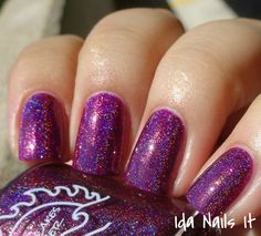 Great Lakes Lacquer The Animal Advocate