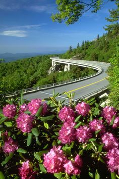 """The NC GreenTravel Initiative is a free program of the North Carolina Division of Environmental Assistance and Outreach to help promote robust economic growth and environmental stewardship in the travel and hospitality sector through the recognition of """"green"""" travel-oriented businesses."""