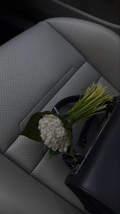 Flower Aesthetic, Aesthetic Art, Aesthetic Pictures, Feed Black, White Flowers, Beautiful Flowers, Dark Feeds, Feeds Instagram, Good For Her