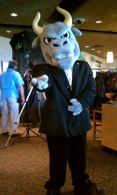 Rocky the business Bull. #USF