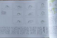 Princess Kaguya Roman Album Art Book