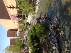 Yien International Garden at Saginaw Valley State University, Saginaw, MI