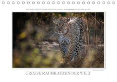 Mein Kalender des Tages:   Emotionale Momente: Große Raubkatzen der Welt. | Kalenderhaus.de