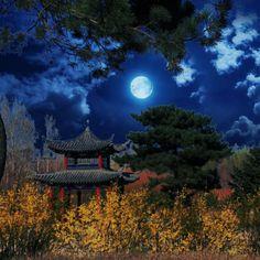 by Wang Jun