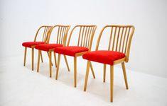 4 kusy, zodpoveda calunenie aj odtien dreva Chair, Furniture, Home Decor, Recliner, Homemade Home Decor, Home Furnishings, Decoration Home, Chairs, Arredamento