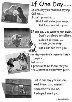 This made me cry :'( when i finally sit and stop to think, I realize how much I miss you best friend.