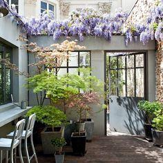 A pretty Parisian courtyard. --pass through window from the interior kitchen?