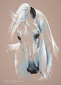 Thoroughbred horse by Paulina Stasikowska