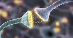 Ciência explica por que reclamar altera negativamente o cérebro  Ler mais: http://www.psicologiasdobrasil.com.br/ciencia-explica-porque-reclamar-altera-negativamente-o-cerebro/#ixzz4DTeuMQL1