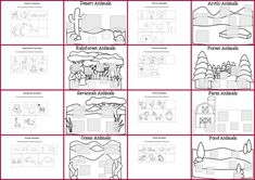 Rainforest Animal Habitats Worksheets