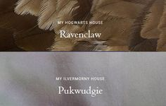My Houses at Hogwarts and its American equivalent.