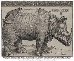"""Albrecht Durer, Rhinoceros, 1515. (based on a written description and brief sketch. Dürer never saw the actual rhinoceros """"probably no animal picture has exerted such a profound influence on the arts"""")"""