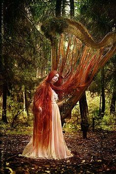 Hair of the Harp