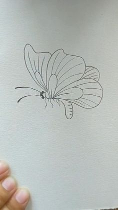 Flower Drawing Tutorials, Flower Art Drawing, Butterfly Drawing, Painting & Drawing, How To Draw Butterfly, How To Draw Flowers Step By Step, Art Drawings Beautiful, Art Drawings For Kids, Art Drawings Sketches Simple