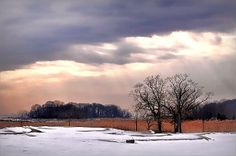 """I call this photograph """"Canopy"""".  Taken at dusk in the winter snow at Rye Golf Course in Rye, New York. The sky was AMAZING then, and now you can have it in your home at it's peak.  On sale at Fine Art America! #sunset #winterlandscape #ryegolfcourse #snow"""