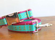 Nautical dog collar and leash
