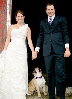 Dog has same tie as groom