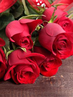 Bye take care Beautiful Roses Bouquet, Red Rose Bouquet, Red Rose Flower, Beautiful Rose Flowers, Beautiful Flower Arrangements, Romantic Roses, Amazing Flowers, Beautiful Flowers, Flower Phone Wallpaper