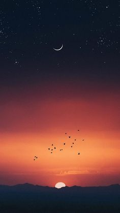 50 ideas for wall paper iphone quotes cover photos phone backgrounds Orange Wallpaper, Apple Wallpaper, Of Wallpaper, Screen Wallpaper, Beste Iphone Wallpaper, Wallpaper Iphone Disney, Best Wallpapers Android, Cute Wallpapers, Iphone Wallpapers