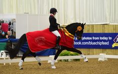 Day five: Paralympian Sophie Wells claims her first British Dressage national title - Horse & Hound http://www.horseandhound.co.uk/news/day-five-paralympian-sophie-wells-claims-her-first-british-dressage-national-title-482672