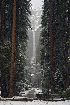 Lower Falls, Yosemite, California photo via kormyo. I pray Yosemite is ok. Oh The Places You'll Go, Places To Travel, Places To Visit, Yellowstone Nationalpark, Yosemite California, California Usa, California Winter, Yosemite Falls, Les Cascades