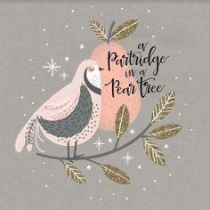 Jenny Wren - Partridge-in-a-pear-tree