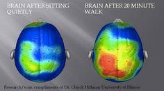 Need a brain power boost? Go for a quick walk! #usqstudy #studytips #healthyU