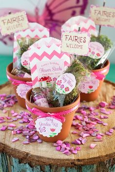 DIY: Fairy Garden Kit as party favours Garden Birthday, Fairy Birthday Party, Girl Birthday, Birthday Diy, Birthday Ideas, Garden Ideas Homemade, Fairy Tea Parties, Tinkerbell Party, Easter Baskets