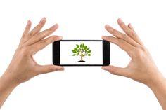 Aplicaciones ecológicas que debes tener en tu smartphone para celebrar Día de la Tierra http://www.audienciaelectronica.net/2015/04/22/aplicaciones-ecologicas-que-debes-tener-en-tu-smartphone/