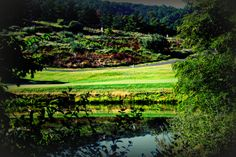 One of the ponds on our Jack Nicklaus course! Jack Nicklaus, Ponds, Golf Courses, Water Feature